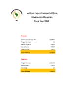 2017 Financial Report